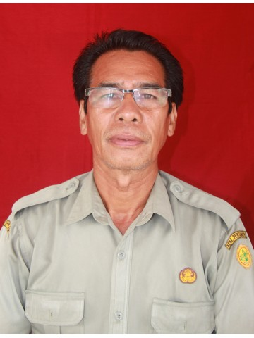 Ir. Stepanus Bulu, MP